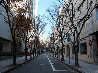 大勢の見物客が訪れるルミナリエだが、通りはとても清潔できれいだ