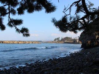 越前松島の岩礁の北側には砂浜が延びる。浜地という地名だ