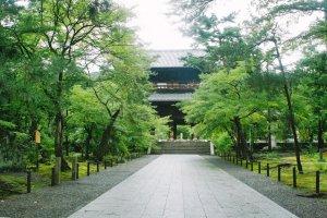 Sando atau jalur masuk menuju kuil, terlihat di depan Gerbang Sanmon menanti dengan gagah.