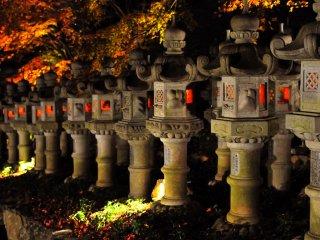 Les lanternes du soir sont entourées par le feuillage d'automne