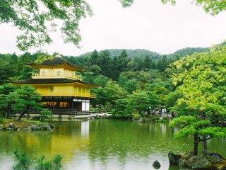 Kinkaku-ji merupakan kuil cantik nan megah, bangunan utamanya dihiasi oleh kolam dan pepohonan yang menyegarkan mata.