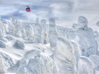 乘坐缆车来到山顶