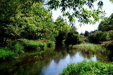 카루이자와 쿠모바 연못 주위를 걷다