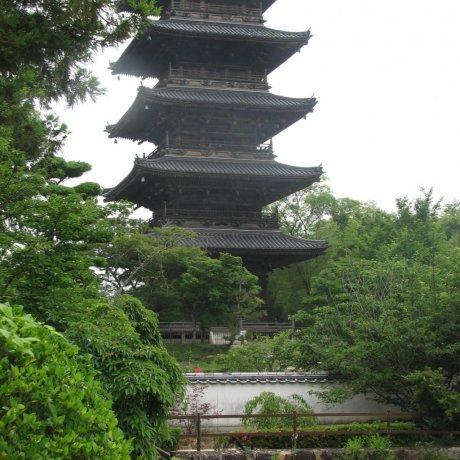 Bitchu Kokubunji: The Last Pagoda