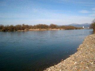 滔々と流れる福井一の大河・九頭竜川である。このあたり、舟橋は河川敷まで降りることができる
