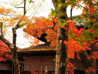 I took a rest at 'Shinwa-tei Tea House' before going to 'Nikko-den'