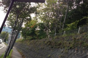 A sign along Kita-Ichijo Miyanosawa Dori points toward the trailhead