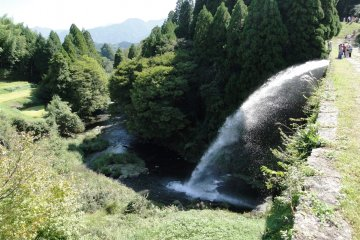 <p>The area around the bridge is a mix of forests and rice paddies</p>