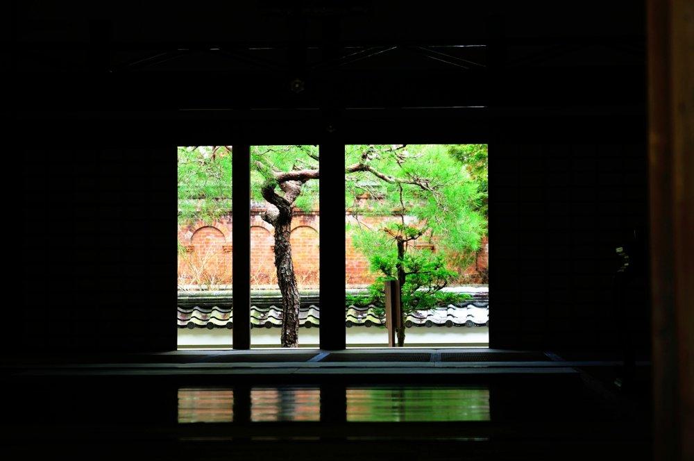 Вид на туннель канала из храма Нанзенин