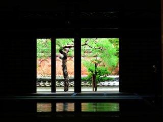 南禅院から水路閣を臨む