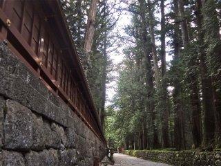 東照宮から二荒山神社に至る参道