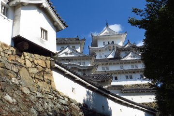 <p>Unlike many of the other castles in Japan, it was never destroyed by any war or natural disasters; which adds to its fame.</p>