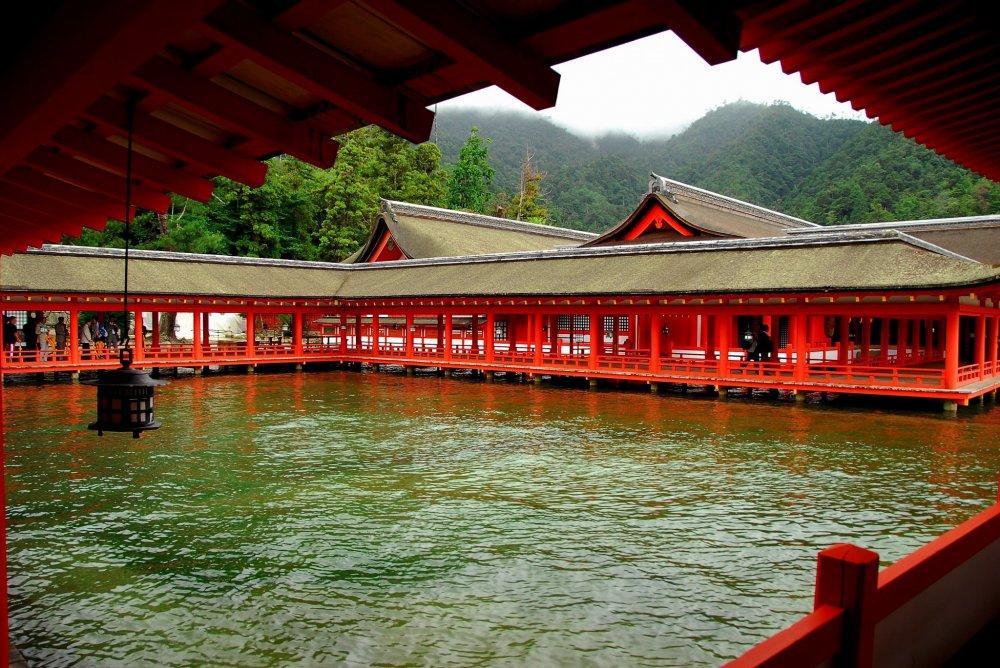 Miyajima Gods Island Hiroshima Japan Travel Japan Tourism
