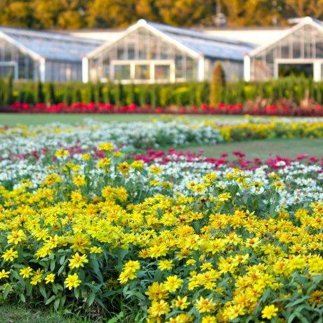 Ofuna Botanical Garden in Photos