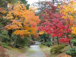 A quiet path in the villa's garden