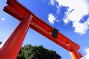 青空の下鮮烈に浮かび上がる藤島神社の赤鳥居