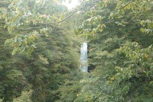 Air terjun Akiu dibalik rimbunya pepohonan