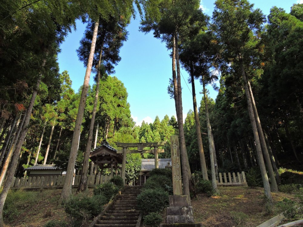 最初に見た神社の景色がこれ・・・もちろん走り出してしまった!
