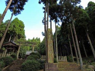 高い杉の木の麓に建つ白山神社の石柱