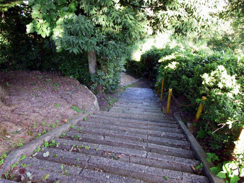 От святилища Фудзисима, расположенного на полпути вверх по склону горы, вам нужно спуститься вниз по длинной каменной лестнице, чтобы достичь святилища Куротацу