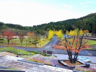 Вид на парк активного отдыха Фукуи с верхних ступеней лестницы
