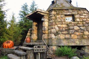 <p>Hagrid&#39;s&nbsp;hut really looks cosy</p>