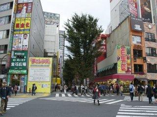 Ban ngày ở Shinjuku