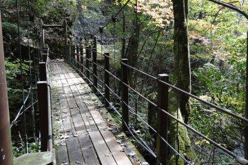 <p>우메노키 폭포로 가는 작은 다리</p>