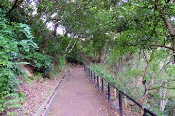 계단은 경사로 바뀌었지만 오르기는 여전히 힘들었다.