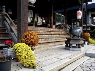 Bởi đang vào thu, các chậu hoa cúc xinh đẹp được đặt trang trí ngay trước bậc thềm