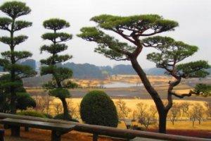 The view from Kairakuen over Lake Senba in the rain