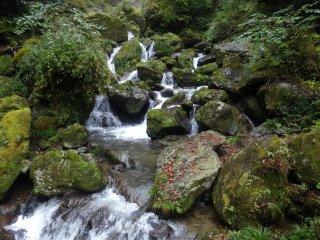 น้ำตกแห่งนี้ไหลลงสู่แม่น้ำคุมะ ซึ่งคดเคี้ยวไปบนพื้นที่ทางตะวันตกของเกาะคิวชู