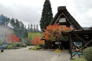 <p>A shot of some of the houses, moved from Shirakawa-go</p>