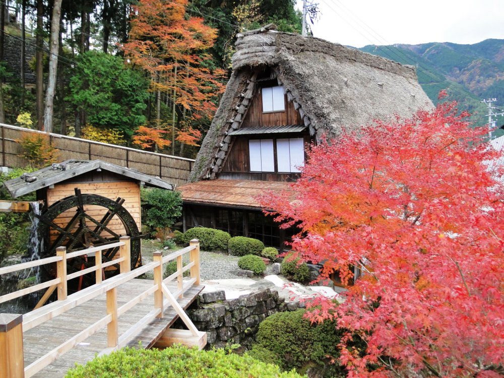 The Banko-an House at Gassho Mura, surrounded by fall foliage