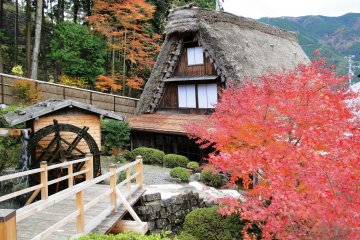Gassho Folk Village in Autumn