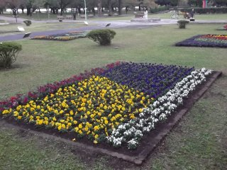 And there are plenty of flowerbeds to admire