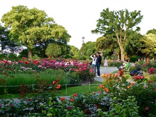 The park has large numbers of flower beds that are in bloom all year.