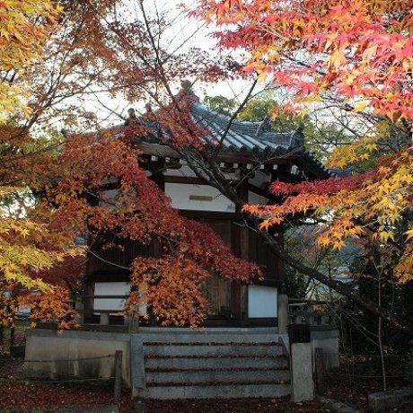 京都・嵯峨野「清凉寺」