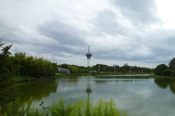 View of the pond and the observatory tower.