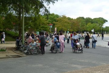 공원에서 시간을 즐기는 노인들