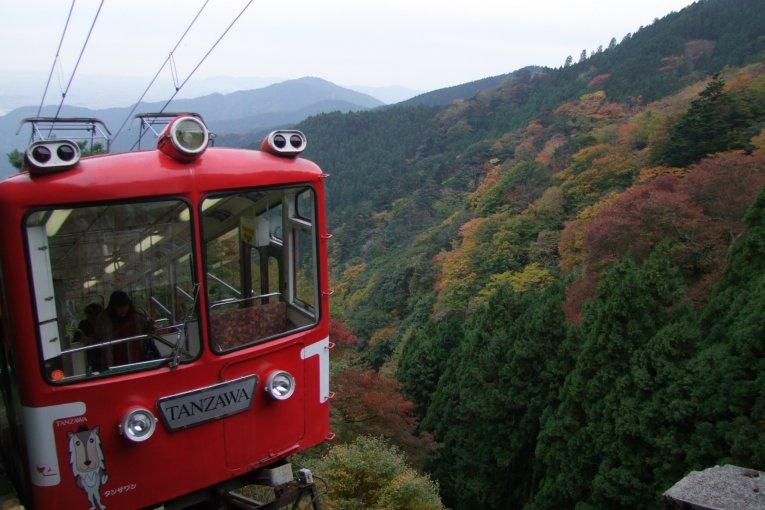 Tanzawa-Oyama Freepass