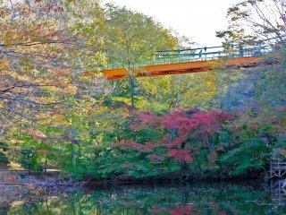 Jembatan gantung Izumi membentang 64,4 meter di atas kolam