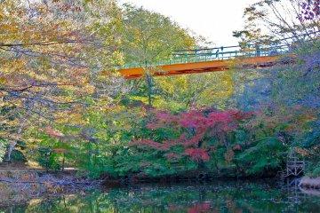 สะพานแห่งสวนอิซุมิในชิบะ