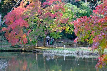 <p>Many families hiked through the park to settle around the duck pond</p>
