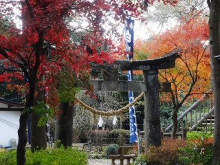 The site is considered sacred, hence the toriigate and the small shrine next to the water source