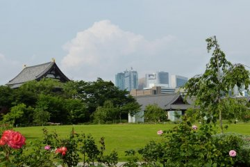 A view of the temple from Shiba Koen Park.