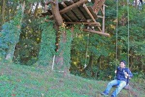 Yokota Farm tree house and swing
