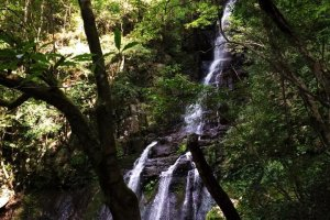 With a 30 meter drop, Oh-taki is the largest of the waterfalls on the trail.