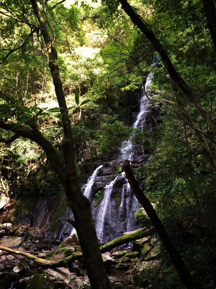 <p>With a 30 meter drop, Oh-taki is the largest of the waterfalls on the trail. &nbsp;</p>