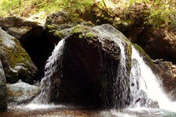 <p>Водопад, стпрятанный в лесу, возле Хаякава</p>